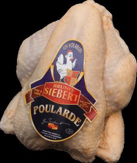 Fattened Hen